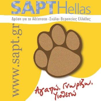 Λογότυπο της SAPT Hellas