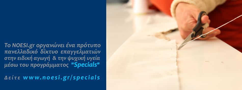 Ποια άτομα περιλαμβάνει το δίκτυο επαγγελματιών SPECIALS του NOESI.gr;